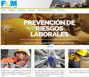 fymingenieria.cl